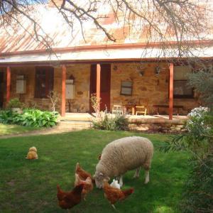 酒店图片: Liebelt House, Littlehampton