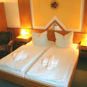 Hotelbilleder: Hotel Asterra, Saalfeld