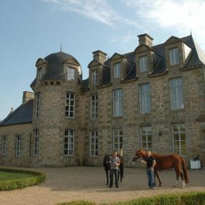 Hotel Pictures: Chateau Du Bois Guy, Parigné