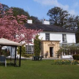 Hotel Pictures: Plas Hafod Hotel, Mold