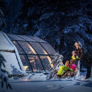 Hotel Pictures: Lapland Igloo, Ranua