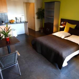 Hotel Pictures: Les Palatines, Saint-Étienne