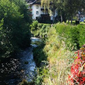 Hotelbilleder: Enz Residenz, Enzklösterle