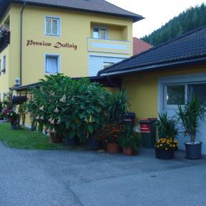 Fotografie hotelů: Pension & Ferienwohnung Dullnig, Gmünd in Kärnten