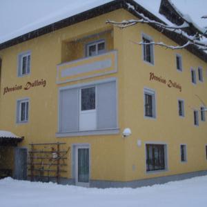 酒店图片: Pension & Ferienwohnung Dullnig, Gmünd in Kärnten