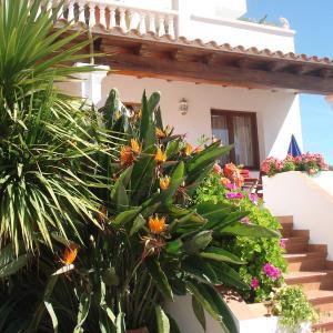 Hotel Pictures: Apartamentos Ferrer, Es Figueral Beach