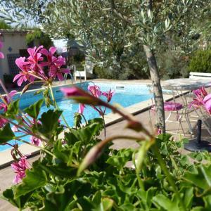 Hotel Pictures: La Gallinette, Villedubert