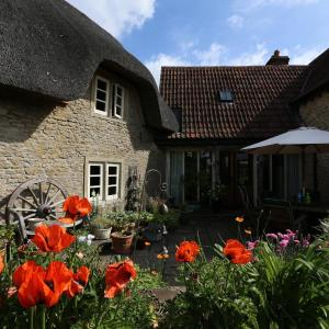 Hotel Pictures: Thatch cottage, Lacock