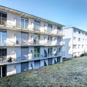 Hotel Pictures: LucerneBusinessApartmentsBraui, Hochdorf