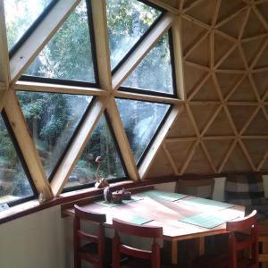 Фотографии отеля: Domo del bosque, Dalcahue