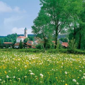 Hotelbilleder: Hotel Therme garni Bad Birnbach, Bad Birnbach