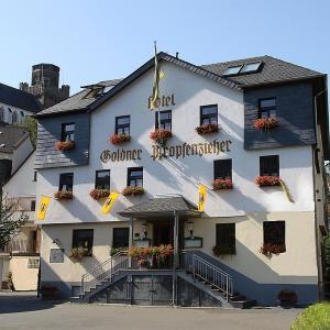 Hotel Pictures: Goldener Pfropfenzieher, Oberwesel