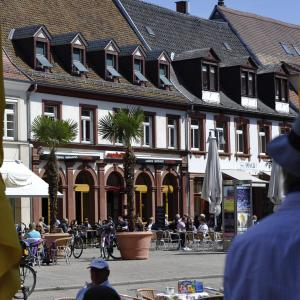 Hotel Pictures: Maximilian, Speyer