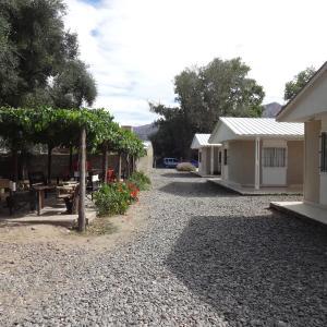 Zdjęcia hotelu: Patio de Olivos, Cafayate