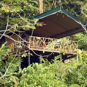 Hotelfoto's: Rafiki Safari Lodge, Savegre