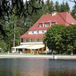 Hotelbilleder: Hotel Waldsee, Lindenberg im Allgäu
