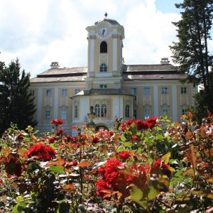 酒店图片: Schlosshotel Rosenau Superior, 罗西瑙城堡