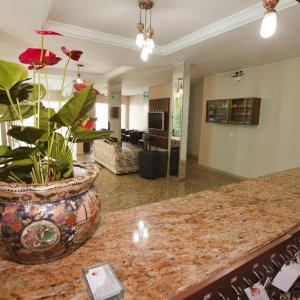 Hotel Pictures: Hotel Oly Plaza, Piracicaba