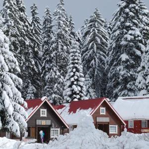 Hotellbilder: Ski Chalet Borovets, Borovets