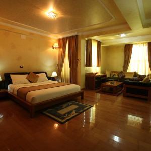 Hotelbilleder: Ark Hotel, Addis Ababa