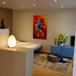Hotel Pictures: Via Giacomo Brentani Apartment, Lugano