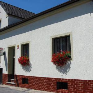Hotel Pictures: Pension Begonie, České Budějovice
