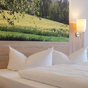 Hotelbilleder: Garden Hotel, Nürnberg