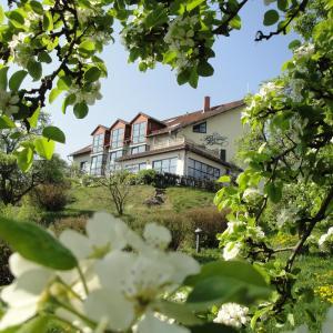 Hotel Pictures: Landhotel Burgenblick, Erfurt