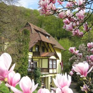 Hotel Pictures: Lettisches Haus, Freiburg im Breisgau