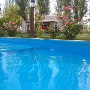 Фотографии отеля: Finca los Almendros, Colonia Las Rosas