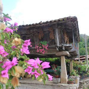 Hotel Pictures: El Colladín, Llerices