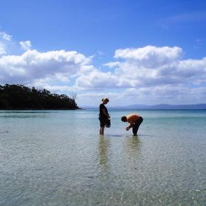 酒店图片: Bruny Island Escapes and Hotel Bruny, Alonnah
