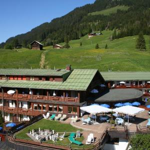 酒店图片: IFA Alpenhof Wildental Hotel Kleinwalsertal, 米特尔贝格