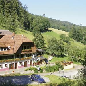 Hotel Pictures: Zuwälder Stüble, Oberharmersbach