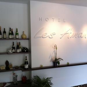 Hotel Pictures: Inter-Hotel Les Amandiers, Tournon-sur-Rhône
