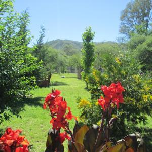Hotelfoto's: Apart Cabañas Altos de Vaquerias, Valle Hermoso