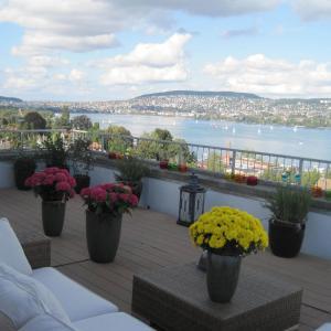 Hotel Pictures: Guest House Bellevue Terrace, Zürich