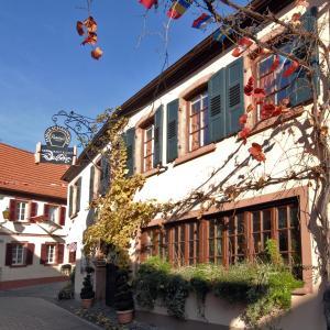 Hotelbilleder: Hotel Dalberg, Sankt Martin