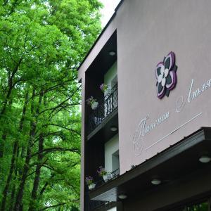 ホテル写真: Boutique Hotel Lyulyak, Starozagorski Bani
