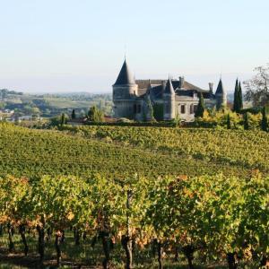 Hotel Pictures: Chateau de la Grave, Bourg-sur-Gironde