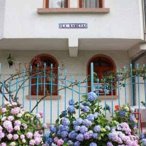 ホテル写真: La Kameya, Kiten