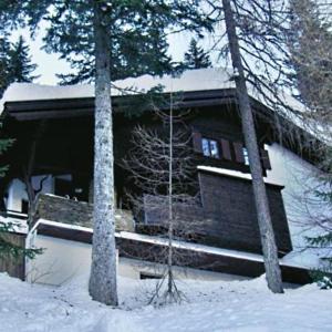 酒店图片: Wurzer Ferienhütte, 索内纳尔佩·纳斯费尔德