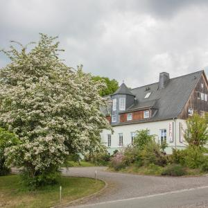 Hotel Pictures: Landhotel Gutshof, Hartenstein