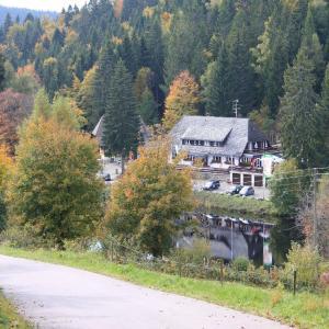 Hotelbilleder: Klosterweiherhof, Dachsberg im Schwarzwald