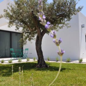 Hotel Pictures: Casa Solà, Menfi