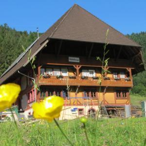 Hotel Pictures: Wäldebauernhof, Gutach