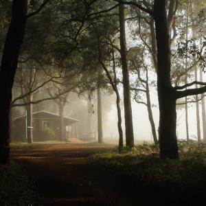 酒店图片: Balingup Heights Hilltop Forest Cottages, Balingup