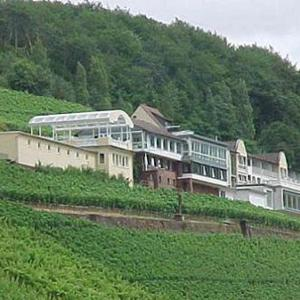 Hotelbilleder: Panorama Hotel und Restaurant Schloßberg, Alzenau in Unterfranken