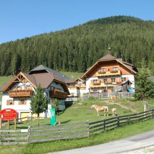 Zdjęcia hotelu: Hansalagut, Mauterndorf
