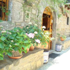 Hotel Pictures: Casa Artio, Ansó